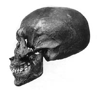 Photograph of the skull of the mummy from KV-55.