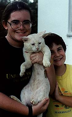 Photograph of Dave the Cat with Megaera and Malachi.